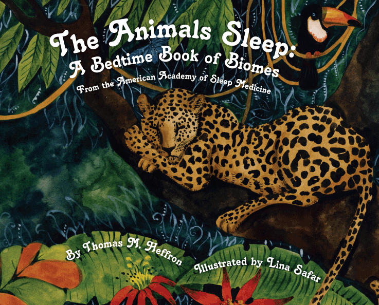 The Animals Sleep: A Bedtime Book of Biomes